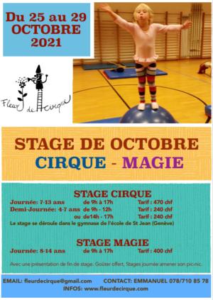 Capture d'écran Fleur de Cirque Octobre 2021